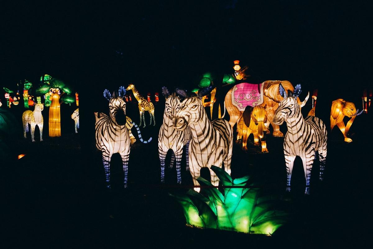 Китайские фонари в Летопарке 2020