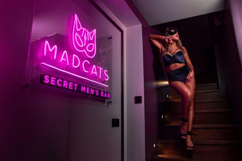 Бар Mad Cats Харьков