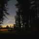 Ночной поход в лес Харьков